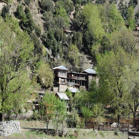 Destida Bed & Breakfast Kalash Valley, Chitral