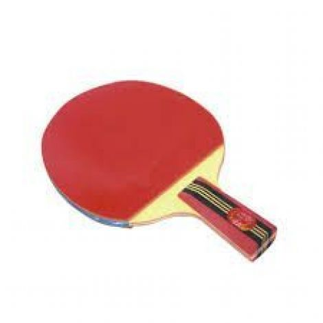 Double Fish 4A Table Tennis Racket