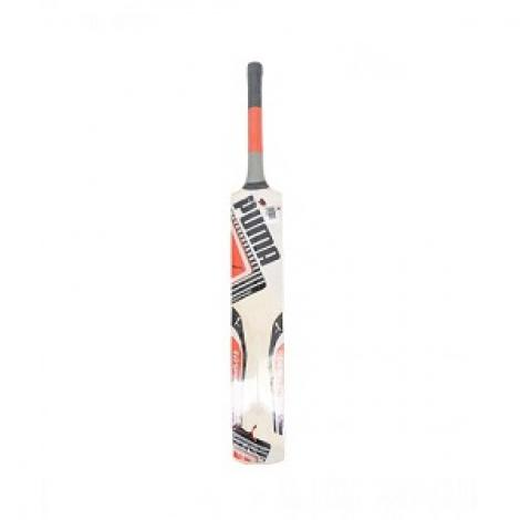 Hard Ball Cricket Bat For Kids