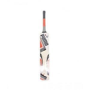 Hard Ball Cricket Bat For Kids
