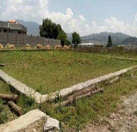 Abbottabad,1 Kanal Plots