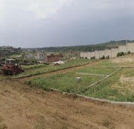 Abbottabad,5 Marla Plots