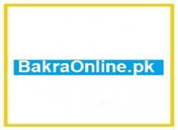Bakra online